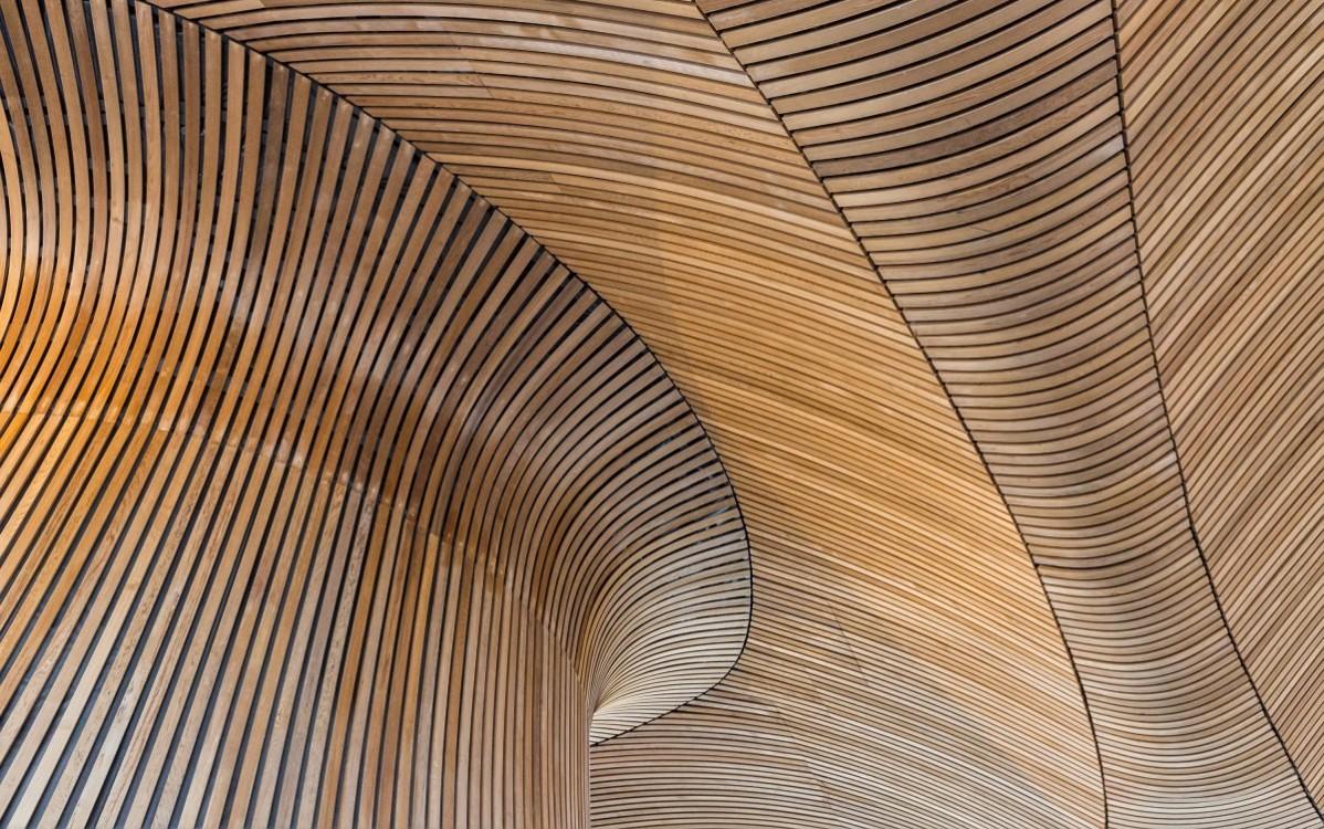 duurzaam houten gebouw - organische vormen