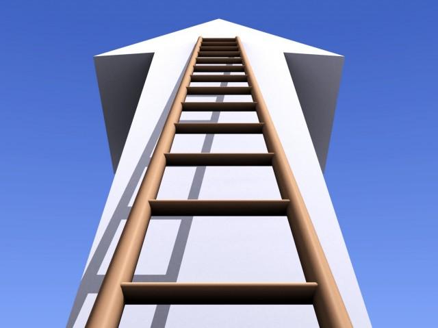 loopbaan ladder