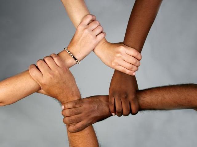 Diversity diversiteit
