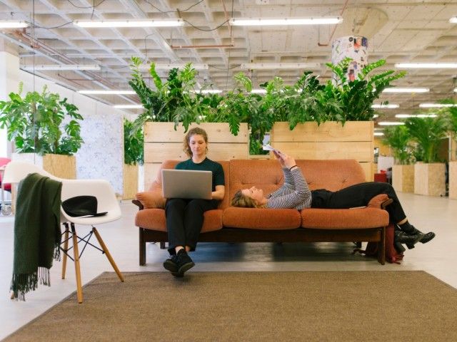 remote work-office work. foto:ivo de bruijn